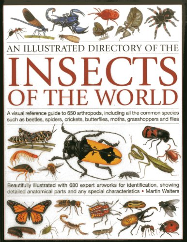 An Illustrated Directory of the Insects of the World: A visual reference guide to 650 arthropods, including all the common insect species such as ... illustrated with 680 expert artworks