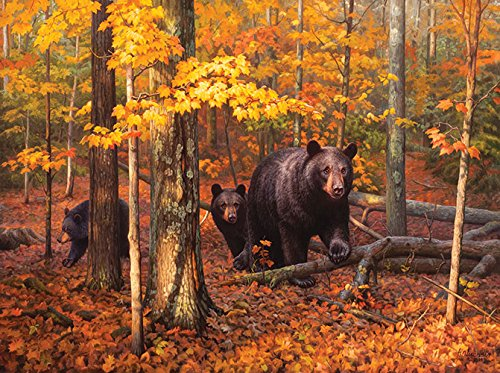 Many Faces of the Woods 1000 pc Jigsaw Puzzle by SunsOut ()