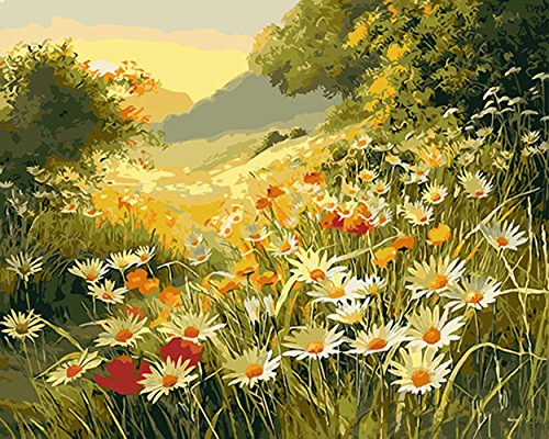 - CaptainCrafts New Paint by Numbers 16x20 for Adults, Kids LINEN Canvas - Mountain Peak Flowers (With Frame)