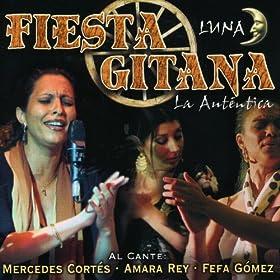 Amazon.com: Fiesta Gitana Luna: Amara Rey & Fefa Gómez Mercedes