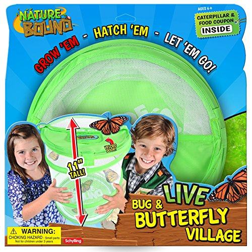 The 8 best bug habitats toys