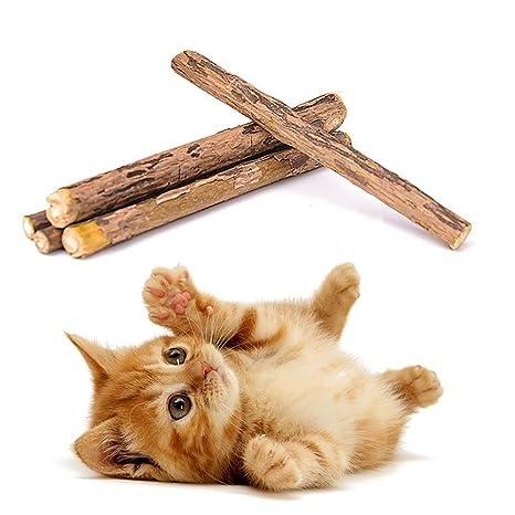 AOLVO 5 Piezas Dentasticks,Catnip Gatos Matatabi Juguete Masticar Palos Gatito De Mascotas Limpieza Dientes