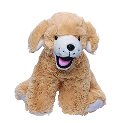 "Beary Fun Friends Recordable 8"" Plush Goldie The Lab/Retriever w/20 Second Digital Recorder for Special Messages, Rymes or Songs: Toys & Games"