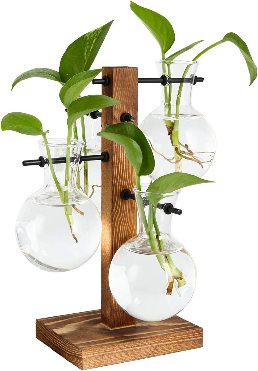 PAG Plant Terrariums Kit Desktop Hydroponics Air Planter Holder with 4 Bulb Beaker Glass Vase and Solid Wood Stand for Home Office Decoration