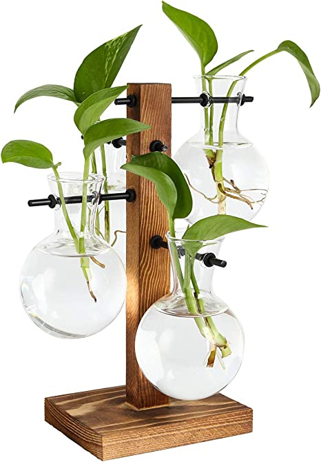 Glass Beaker Bulbs Terrarium Planter Set With Wood Stand Hydroponic Plant Vase