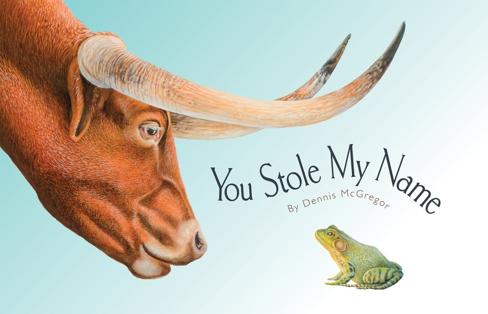 You Stole My Name pdf epub