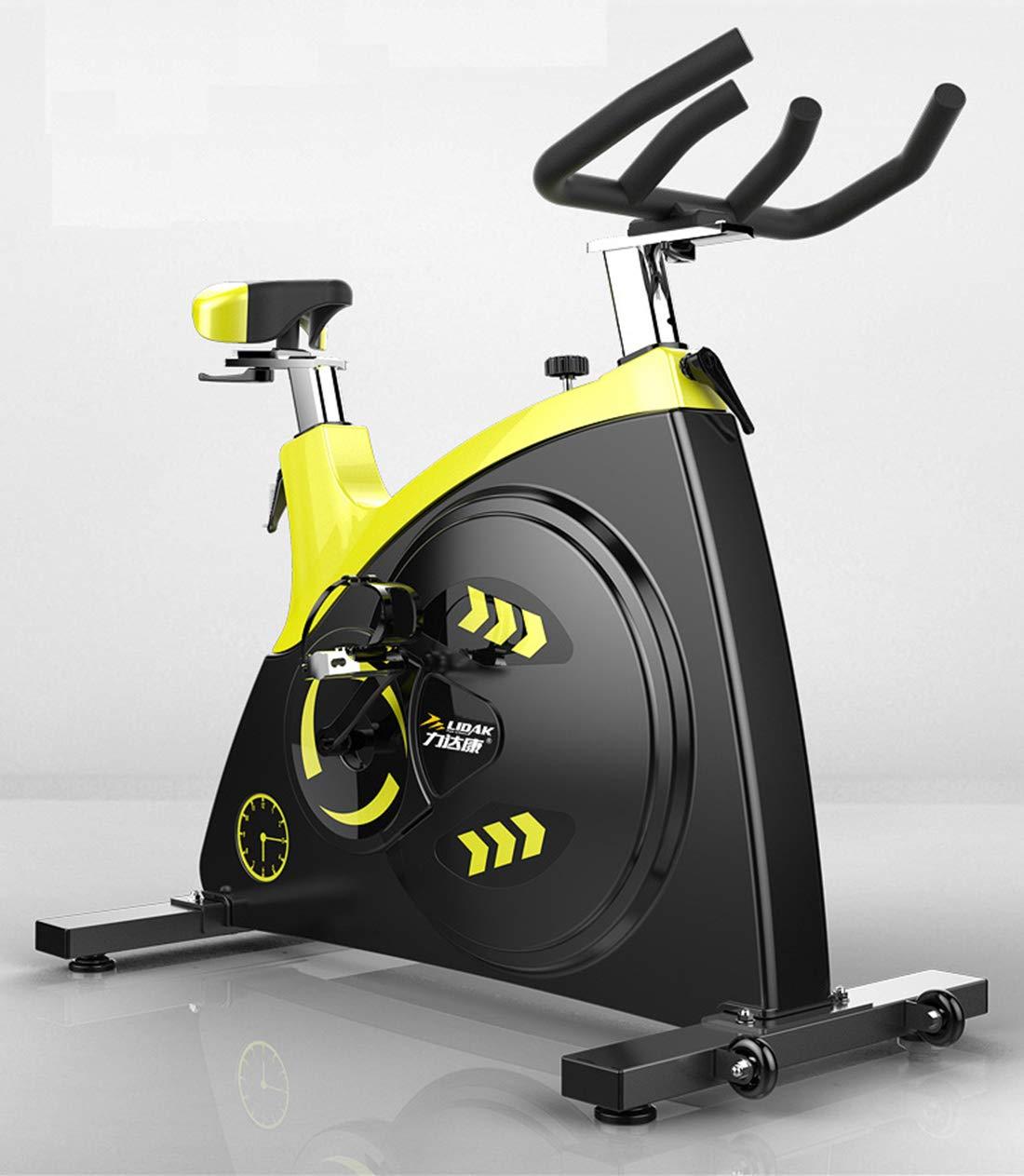 DoubleZhou フィットネスバイク エクササイズバイク マグネティックバイク 有酸素運動 トレーニングマシン エアロバイク 室内自転車   B07QKF578N