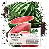 Package of 100 Seeds, Crimson Sweet Watermelon (Citrullus lanatus) Non-GMO Seeds by Seed Needs