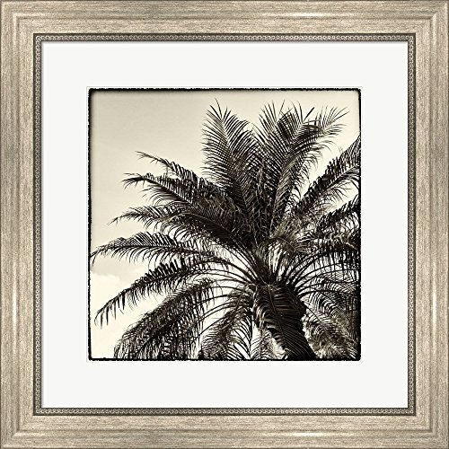 (Palm Tree Sepia I by Debra Van Swearingen Framed Art Print Wall Picture, Silver Scoop Frame, 19 x 19 inches)