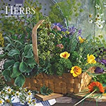 Herbs 2019 12 x 12 Inch Monthly Square Wall Calendar, Gardening Outdoor Home Country Nature Food (Multilingual Edition)