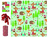 Premium Holiday Recycled/ Christmas Gift Wrapping Paper Kit with Bows, Labels and Twine, Forest Follies