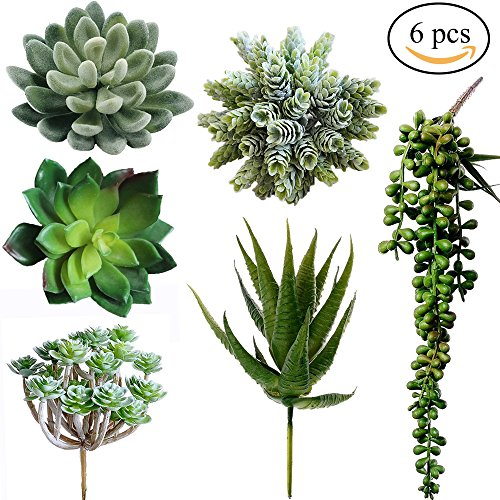 Winlyn 6 Pcs Unpotted Fake Succulents Assorted Faux Succulent in Different Green Artificial Hanging Succulents Textured Faux Succulent Pick Hanging String of Pearls Plant for Wedding Centerpieces (Corsage Pearl Faux)
