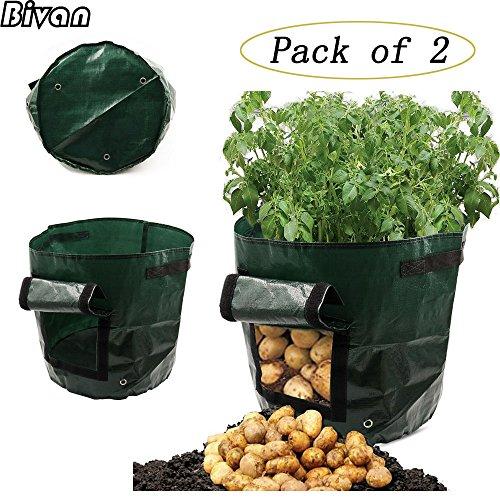 Grow Bags Garden Vegetable Planting Bag - 5