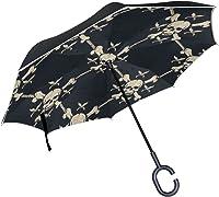 parapluie tête de mort 9