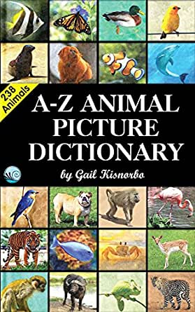 buy International Dictionary