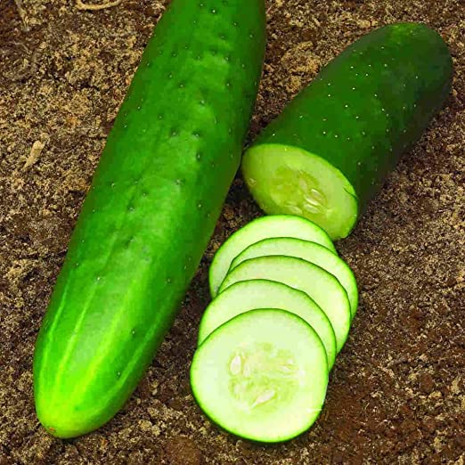 100 Cucumber Seeds Straight Eight seeds  2020 Seed  Combined Shipping $1.69