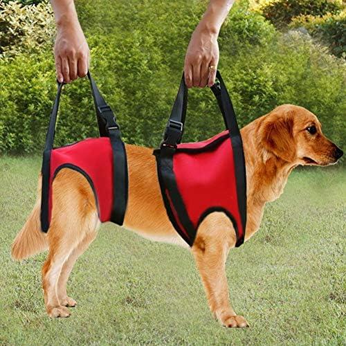 XIAO Soporte para Perros Arnés Pet Walking Ayuda Lifting Pulling ...
