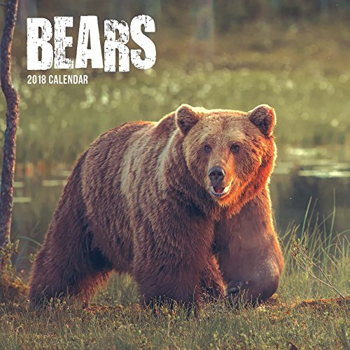 Bears 2018 Wall Calendar (Bear Calendar)