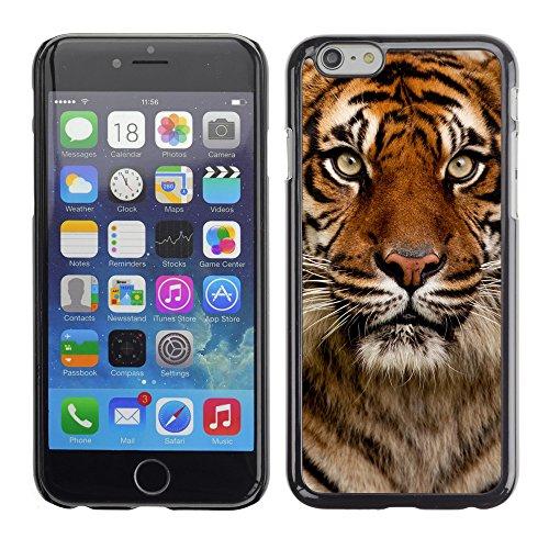 "Premio Sottile Slim Cassa Custodia Case Cover Shell // V00002177 Portrait Tiger // Apple iPhone 6 6S 6G 4.7"""