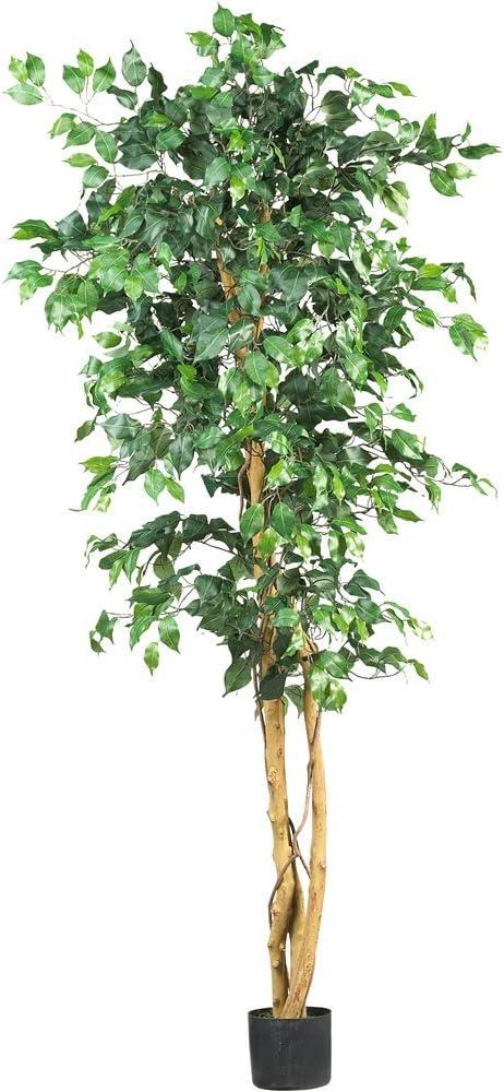 Nearly Natural 5209 Ficus Silk Tree, 6-Feet, Green (Renewed)