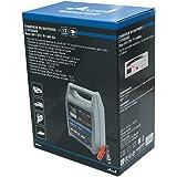 ARCOLL 57317 Chargeur de Batterie 6/12 V 12 A