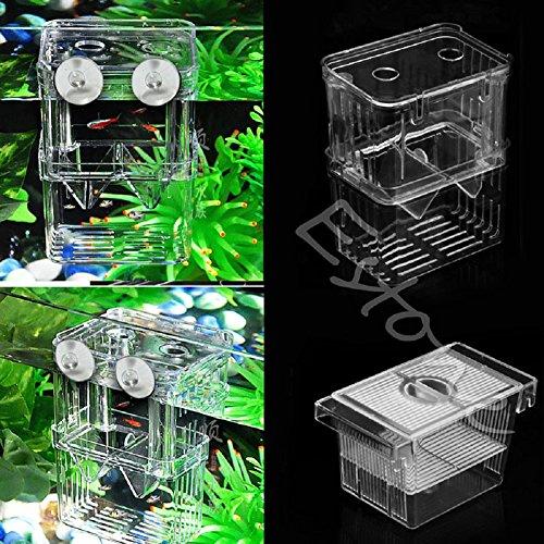 (Itemap Fish Breeding Hatchery Aquarium Young Fish Incubator Breeder Isolation Box (L))