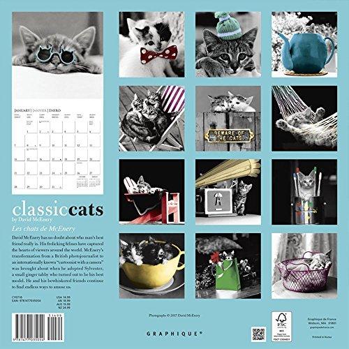 Classic Cats 2018 Wall Calendar Photo #3