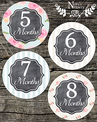 Baby Girl Monthly Stickers - Great Shower Gift or Scrapbook Photo Keepsake