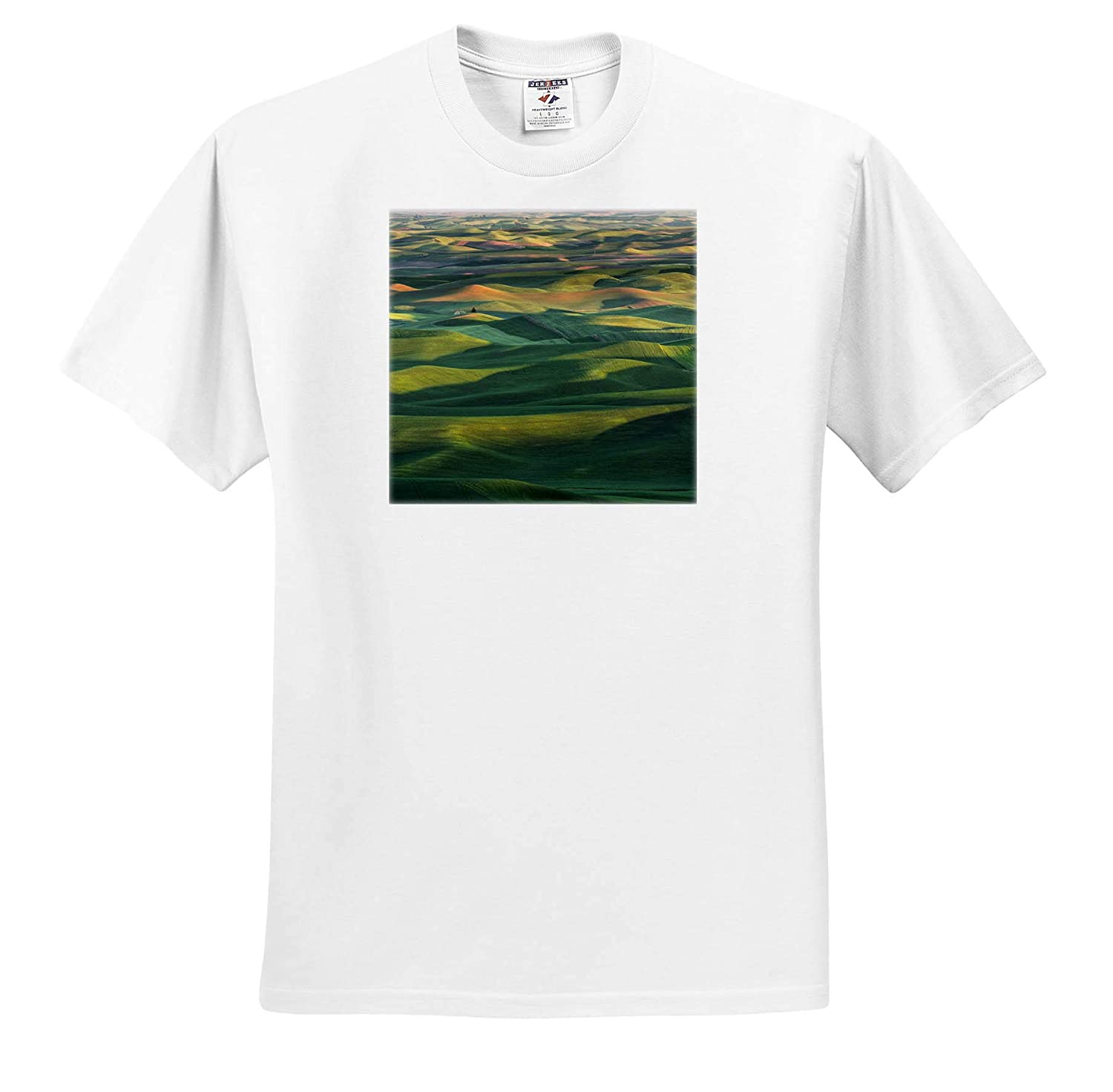 Farms Wheat Crop 3dRose Danita Delimont ts/_315081 - Adult T-Shirt XL Palouse Region of Eastern Washington State