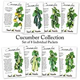 Cucumber Seed Packet Assortment (8 Individual Packets of Cucumber Seeds) Non-GMO Seeds By Seed Needs