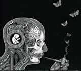 Cognitive By Soen (2012-02-13)
