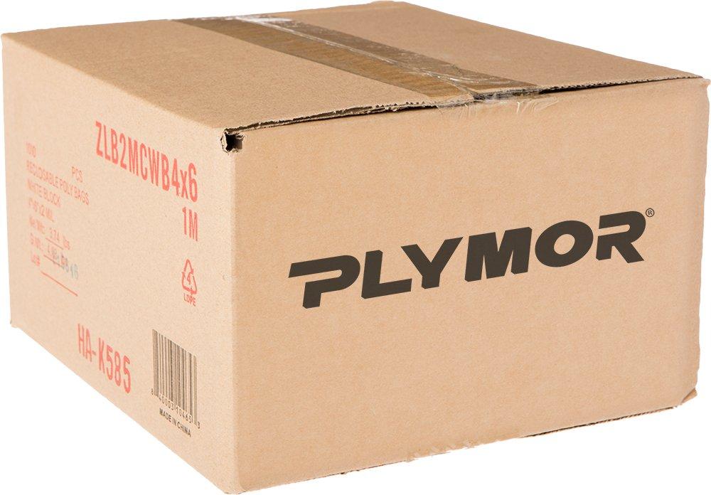 Pack of 100 2 Mil Plymor 4 x 6 Zipper Reclosable Plastic Bags w//White Block