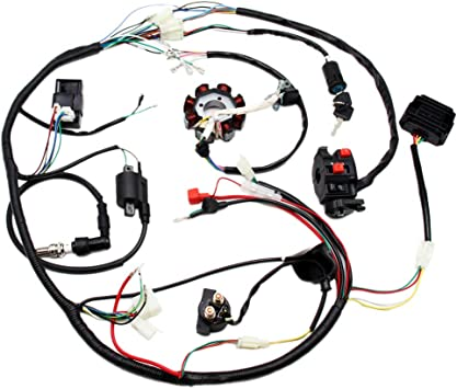 amazon.com: full electric wiring harness wire loom cdi coil stator assembly  for atv quad bike buggy go kart 150cc 200cc 250cc 300cc: automotive  amazon.com