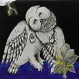 Magnolia Electric Company Co. (Deluxe 2xLP Reissue)