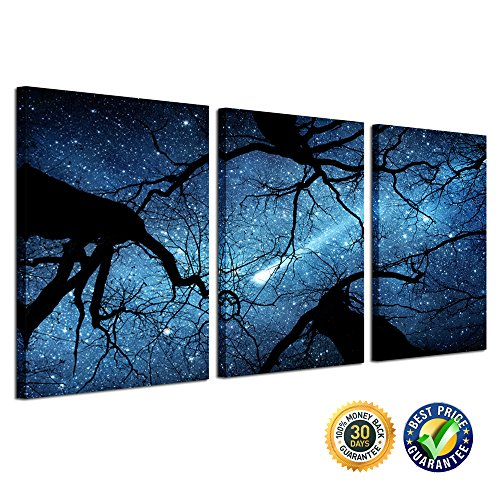 Creative Art - Night Starry Sky Surrounded by Trees Forest C