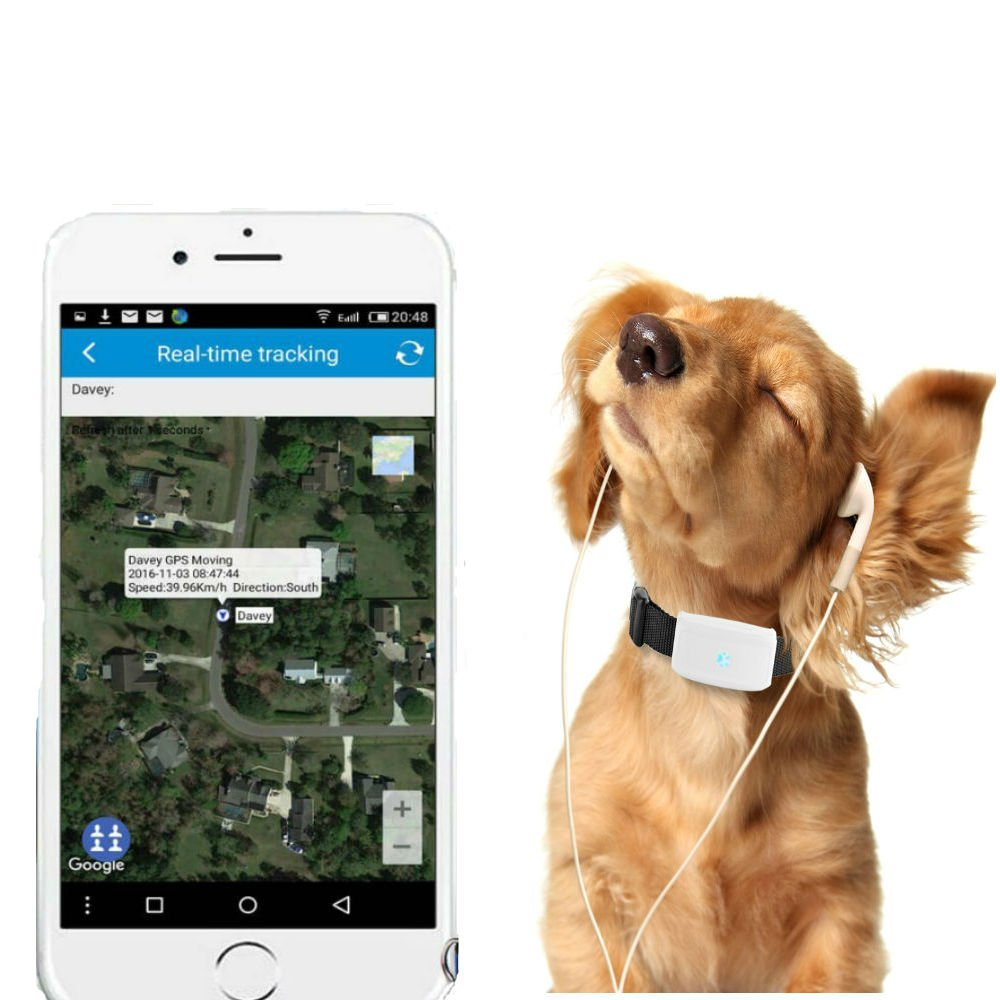 TKSTAR Pet GPS Tracker con Collar, Mini Impermeable GPS Tracking para Perros Cats Puppy, Wifi GPS Anti Lost Dog / Cats Entrenamiento en Tiempo Real con APP ...