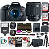Canon EOS Rebel T6i: Wifi Enabled 24 Megapixel 1080p HD video Digital SLR Camera Bundle with 128GB (2 x 64GB SD Cards) Software Pack & DSLR Accessories - Professional Vlogging Sports & Action Cameras