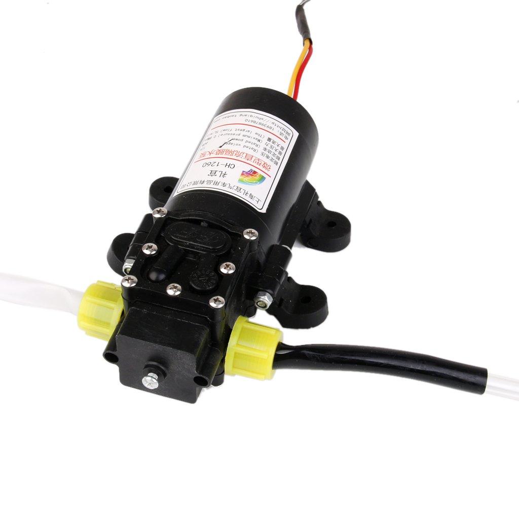 Sharplace 2x Bomba de Aceite de 12V Extractora de Recuperación de Líquidos 60W Accesorio para Coche Motocicleta de 4L