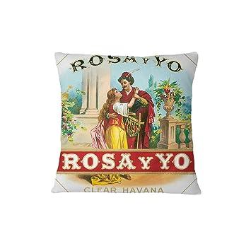 Amazon Com Una Stowe Rosa Y Yo Vintage Poster Sofa Bed Home Decor