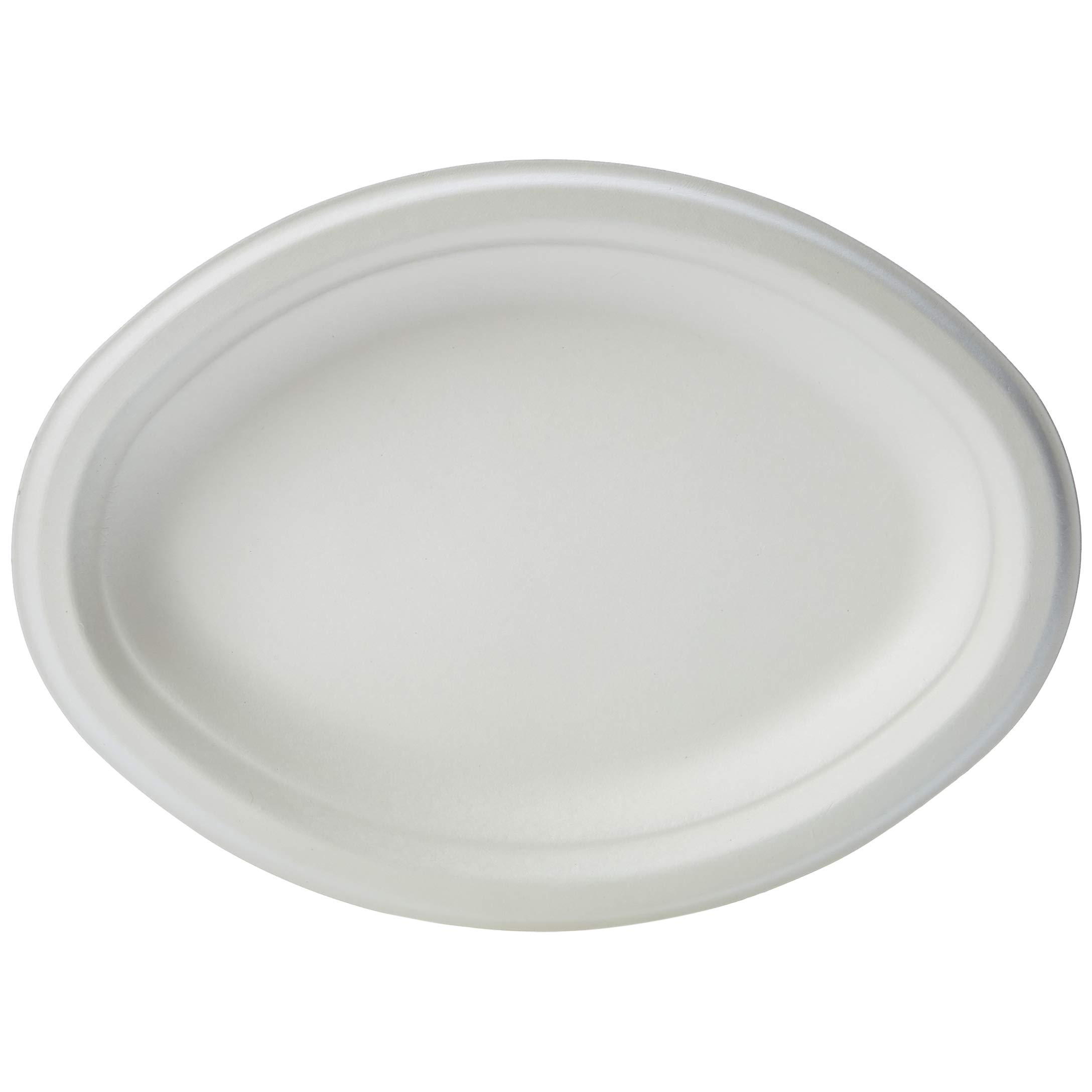 AmazonBasics Compostable Plate, 10 x 7.5 Inches, 500-Count