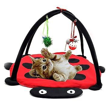 EMVANV Cama de mascotas juguetes tienda de campaña con colgante de ratón campana bolas gatito gato interactivo actividad movil juego alfombra manta hamaca ...