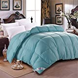 Luxurious King Size Winter Duvet Insert Goose Down Comforter -Solid Light Weight Blue Cotton Shell (King, Blue)