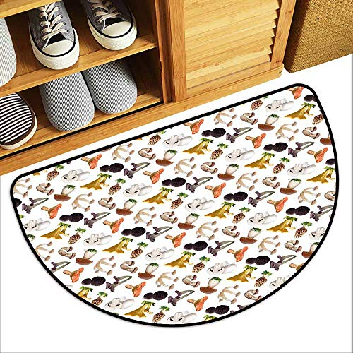 Ladybug Truffles - DILITECK Thin Door mat Mushroom Realistic Style Various Kinds of Fresh Toadstools Truffles Natural Lifestyle Cook Super Absorbent mud W24 xL16 Multicolor
