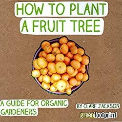 How to Plant a Fruit Tree: A Guide for Organic Gardeners