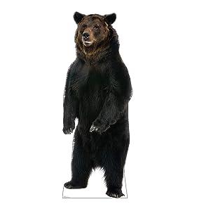 Advanced Graphics Brown Bear Life Size Cardboard Cutout Standup