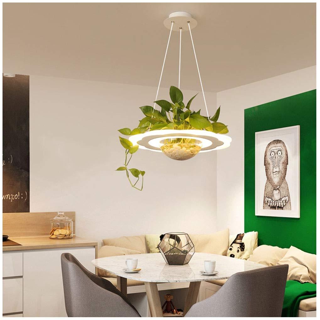 ペンダントライト 現代のペンダントライトノルディックシャンデリア植物シンプルな天井照明器具装飾吊りランプクリエイティブレストランバー店 B07SSTQVSP