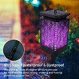 Upgraded Solar Lantern Lights Color Dancing Flame