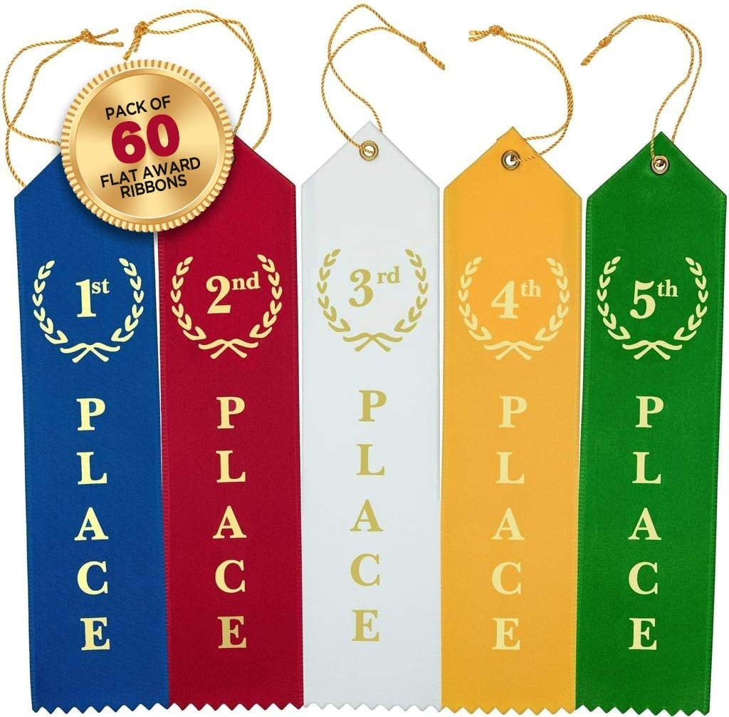 24 Satin PARTICIPANT Award RIBBONS teacher student recognition school event NICE
