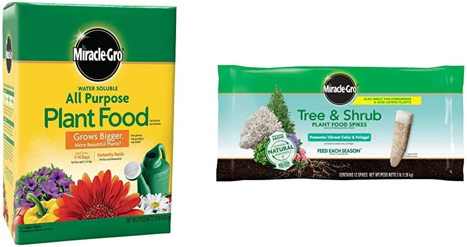 Miracle-Gro Water Soluble All Purpose Plant Food, 10 Lb & Tree & Shrub Plant Food Spikes, 12 Spikes/Pack