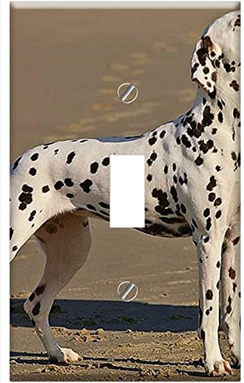 Amazon Com Switch Plate Single Toggle Dalmatian Dog Canine Spotted Spots Standing Home Improvement